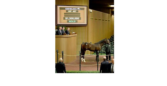War Front Colt Goes for $1.3M at Keeneland